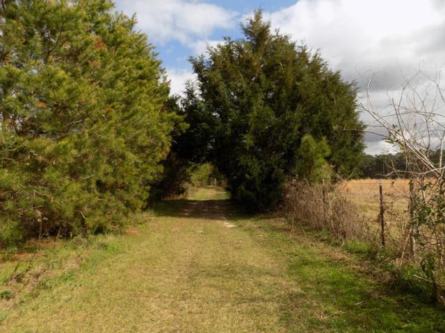 7100 County Road 110, Brundidge, AL 36010 (MLS #172188) :: Team Linda Simmons Real Estate