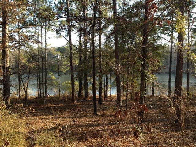 85 Hidden Lagoon Drive, Ft. Gaines, GA 39851 (MLS #172194) :: Team Linda Simmons Real Estate