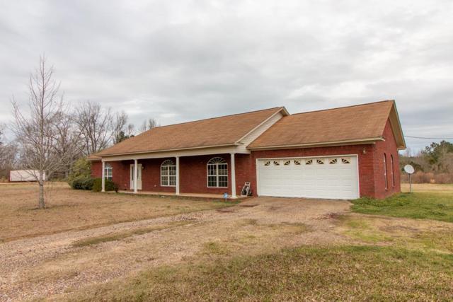 366 County Road 15, Ozark, AL 36360 (MLS #172314) :: Team Linda Simmons Real Estate