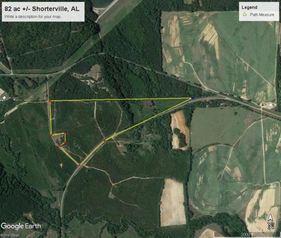1 Alabama Hwy 10, Shorterville, AL 36373 (MLS #172389) :: Team Linda Simmons Real Estate