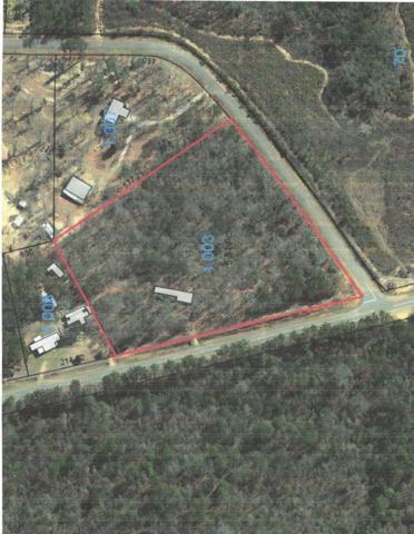 5790 County Rd 97, Abbeville, AL 36310 (MLS #172602) :: Team Linda Simmons Real Estate