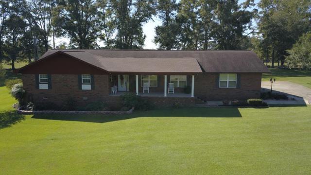 176 Clairmont Drive, Cowarts, AL 36321 (MLS #172795) :: Team Linda Simmons Real Estate