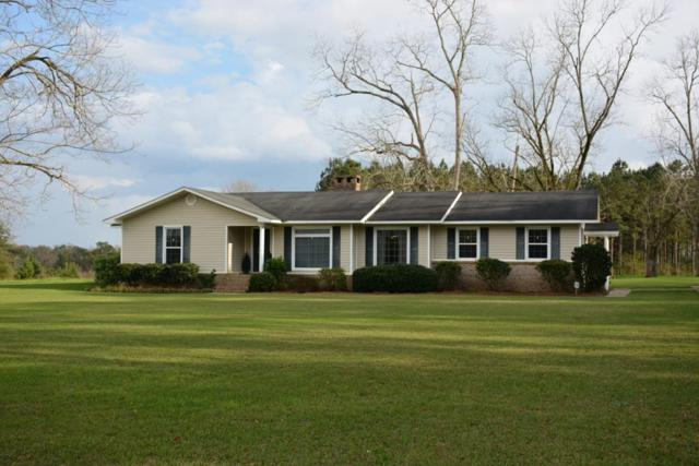 1653 County Road 520, New Brockton, AL 36351 (MLS #172849) :: Team Linda Simmons Real Estate