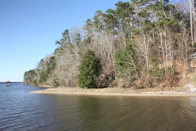 Lot 19 Tanglewood Trail, Georgetown, GA 39854 (MLS #172909) :: Team Linda Simmons Real Estate