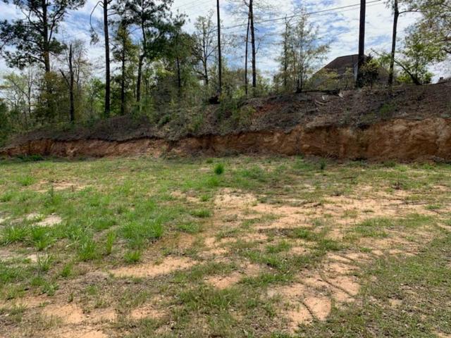 517 Gladstone Way, Dothan, AL 36305 (MLS #173027) :: Team Linda Simmons Real Estate