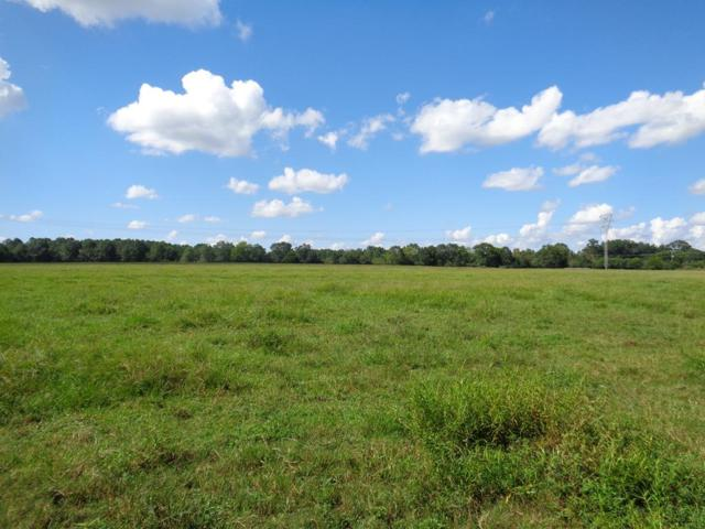 23+/- ac Hodgesville Rd, Dothan, AL 36301 (MLS #173055) :: Team Linda Simmons Real Estate