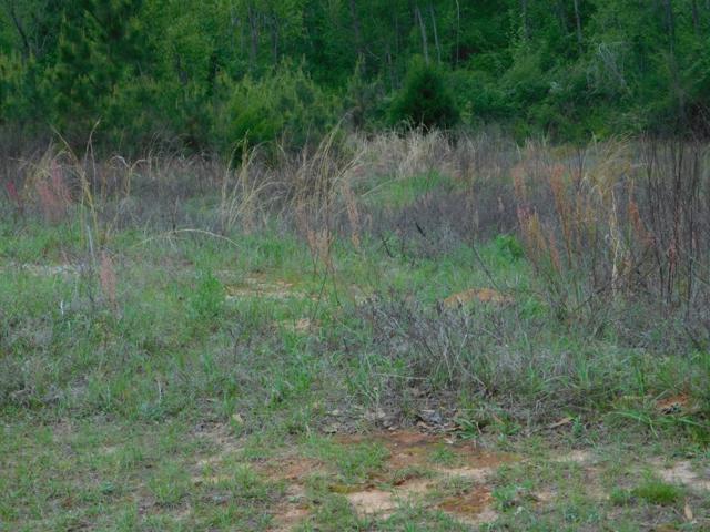 00 Pine Avenue-Block D, Ozark, AL 36360 (MLS #173243) :: Team Linda Simmons Real Estate