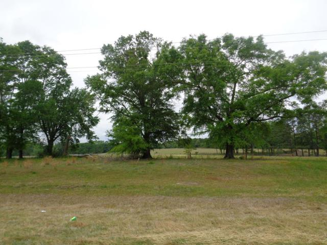 1+-ac Lot 13, Eddins Rd, Dothan, AL 36301 (MLS #173262) :: Team Linda Simmons Real Estate