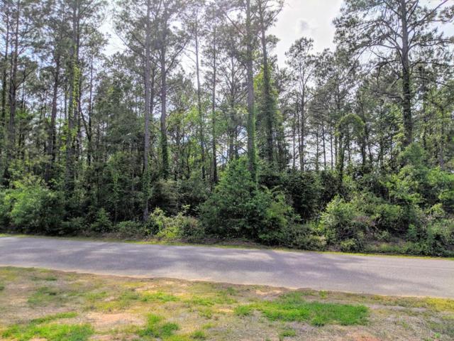 0 Greenview Circle, Dothan, AL 36301 (MLS #173470) :: Team Linda Simmons Real Estate