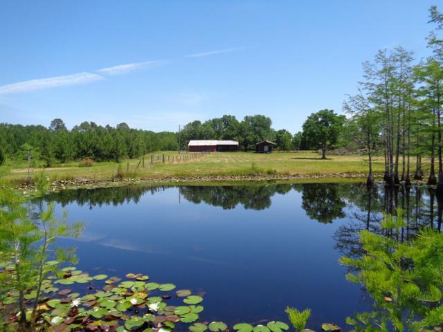 3876 D Hodge Rd, Cottonwood, AL 36320 (MLS #173648) :: Team Linda Simmons Real Estate
