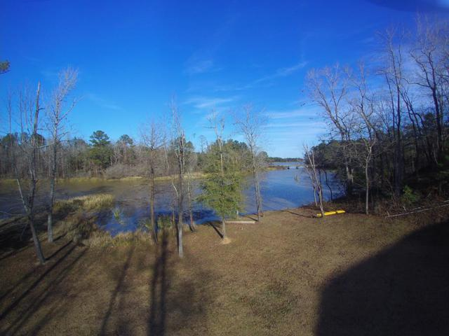 442 County Road 434, Abbeville, AL 36310 (MLS #173696) :: Team Linda Simmons Real Estate