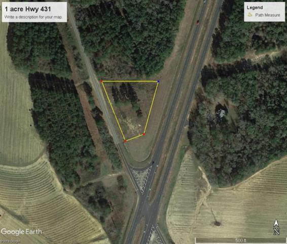 1 Alabama Highway 431, Headland, AL 36345 (MLS #173727) :: Team Linda Simmons Real Estate