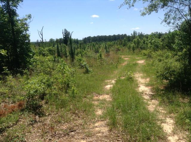 00 Click Wells Road, Baker Hill, AL 36027 (MLS #173729) :: Team Linda Simmons Real Estate
