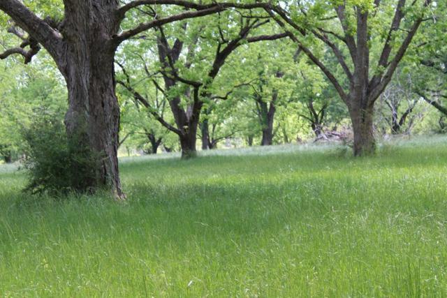 0 County Road 28, Slocomb, AL 36375 (MLS #173747) :: Team Linda Simmons Real Estate