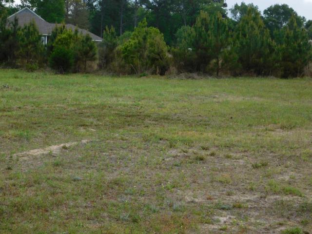 00 Lot 1, Blk C, Sandy Hills Subdivision, Ozark, AL 36360 (MLS #173785) :: Team Linda Simmons Real Estate