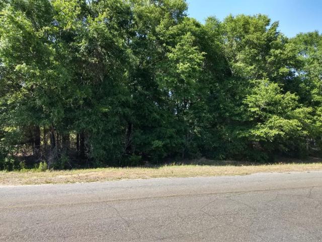 00 Joe Bruer Road, Level Plains, AL 36322 (MLS #173828) :: Team Linda Simmons Real Estate