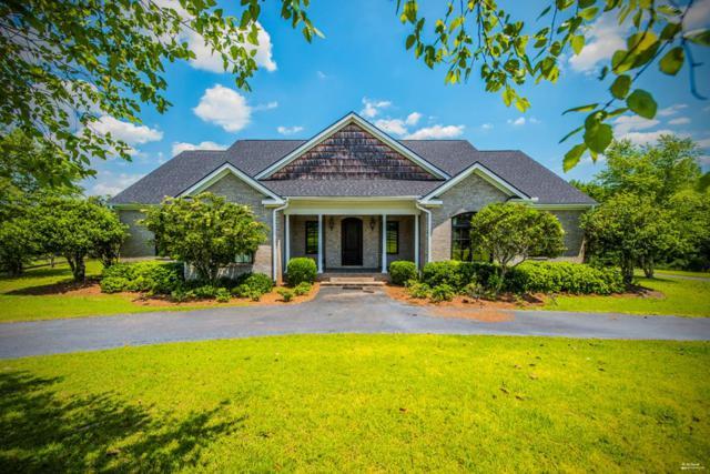 955 Co Rd 3, Headland, AL 36345 (MLS #173832) :: Team Linda Simmons Real Estate