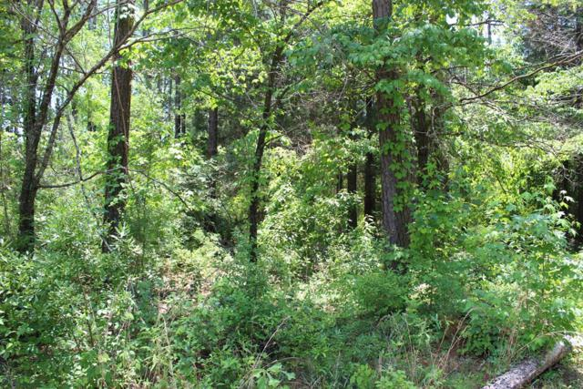 Lot 64 Arrowhead, Abbeville, AL 36310 (MLS #173843) :: Team Linda Simmons Real Estate