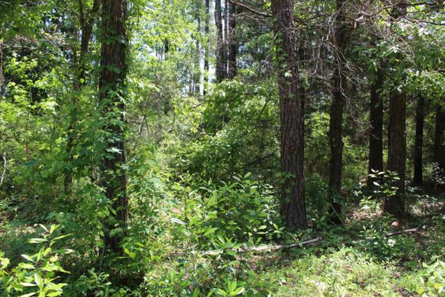 Lot 49 Squaw, Abbeville, AL 36310 (MLS #173846) :: Team Linda Simmons Real Estate