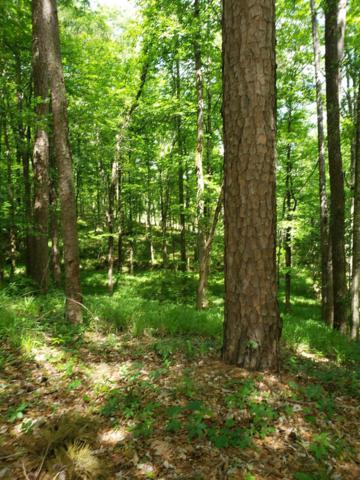 0 Mountain Brook Ln., Troy, AL 36379 (MLS #173995) :: Team Linda Simmons Real Estate