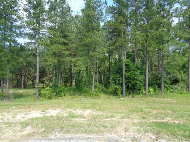 17.9+-ac Cottonwood Rd/State Line Rd, Cottonwood, AL 36320 (MLS #174079) :: Team Linda Simmons Real Estate