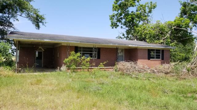 185 West Revells Rd, Blakely, GA 39823 (MLS #174089) :: Team Linda Simmons Real Estate