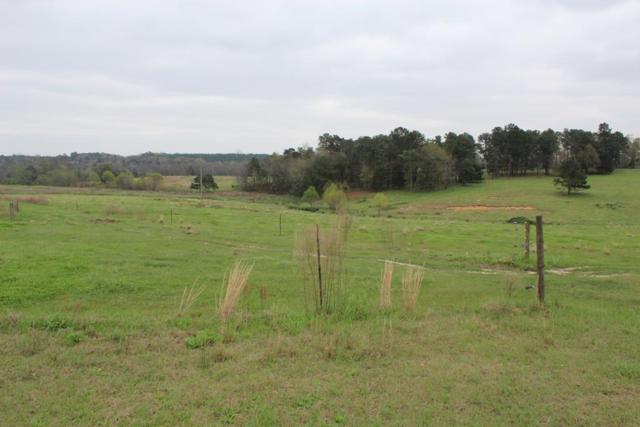 000 County Road 9, Newton, AL 36352 (MLS #174096) :: Team Linda Simmons Real Estate