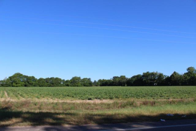xx S State Highway 123, Wicksburg, AL 36352 (MLS #174244) :: Team Linda Simmons Real Estate