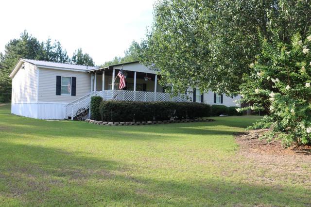 8301 County Road 239, New Brockton, AL 36351 (MLS #174325) :: Team Linda Simmons Real Estate