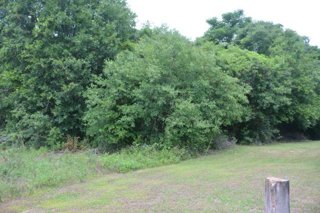 0 Highway 51, Ariton, AL 36311 (MLS #174341) :: Team Linda Simmons Real Estate