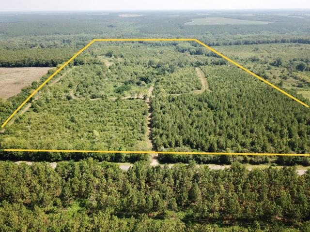 107 ACRE S County Road 6, Black, AL 36314 (MLS #174556) :: Team Linda Simmons Real Estate