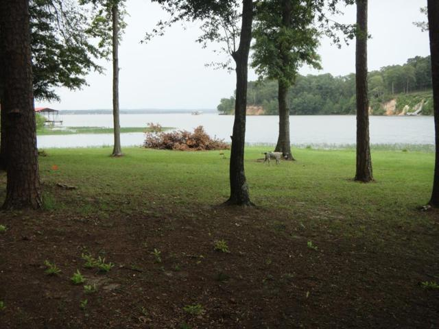 0 Lake Front Drive, Abbeville, AL 36310 (MLS #174575) :: Team Linda Simmons Real Estate