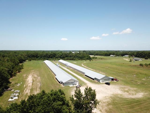 182 County Road 349, Newville, AL 36353 (MLS #174701) :: Team Linda Simmons Real Estate