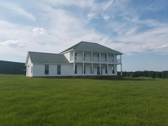 7481 County Road 110, Brundidge, AL 36010 (MLS #174713) :: Team Linda Simmons Real Estate