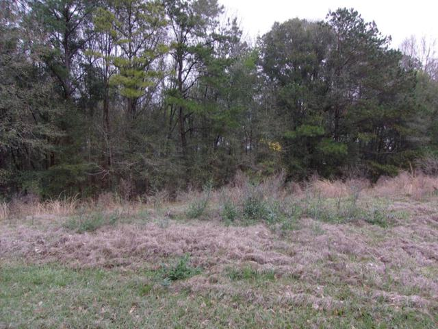 00 County Road 619, Enterprise, AL 36330 (MLS #174836) :: Team Linda Simmons Real Estate