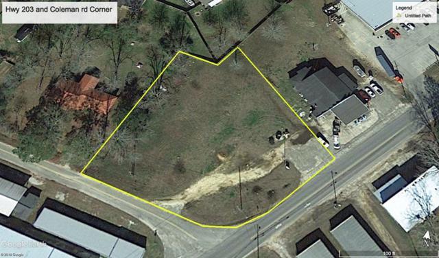 Corner Hwy 203 And Coleman Rd, Rehobeth, AL 36301 (MLS #174957) :: Team Linda Simmons Real Estate