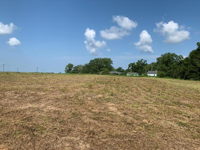 1.5 Acres County Rd 55, Hartford, AL 36344 (MLS #174972) :: Team Linda Simmons Real Estate