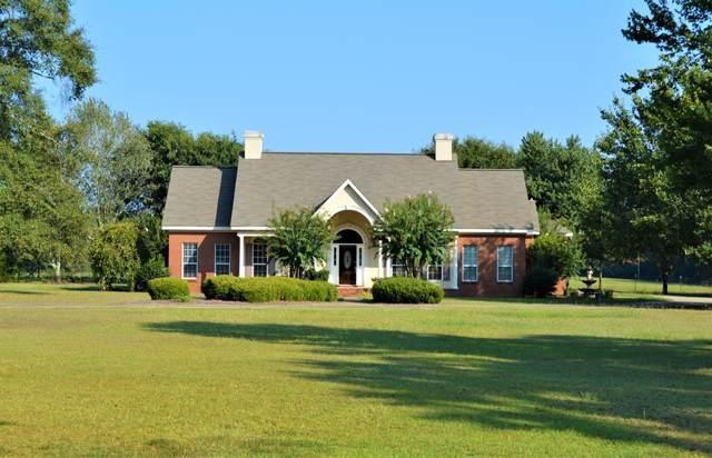 8993 Highway 87, Elba, AL 36323 (MLS #175324) :: Team Linda Simmons Real Estate