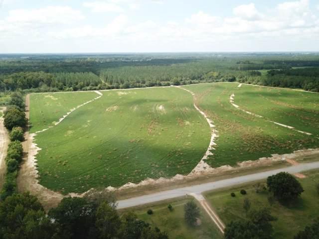6 Acres Dawsey Rd  Lot 1  (Rehobeth School District), Rehobeth, AL 36301 (MLS #175354) :: Team Linda Simmons Real Estate