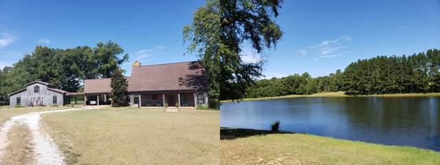 1655 County Road 123, Columbia, AL 36319 (MLS #175393) :: Team Linda Simmons Real Estate