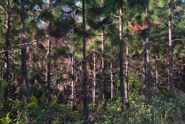 0 Dexter, Webb, AL 36376 (MLS #175485) :: Team Linda Simmons Real Estate