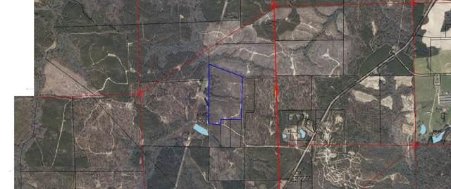 0 N State Highway 95 North, Abbeville, AL 36310 (MLS #175523) :: Team Linda Simmons Real Estate
