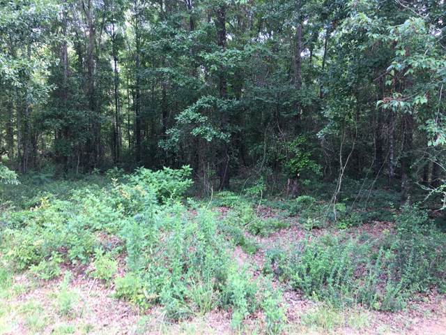 Lot 1 Olympia Drive, Dothan, AL 36301 (MLS #175549) :: Team Linda Simmons Real Estate