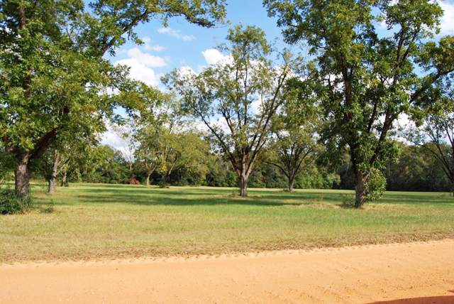 3 Acres Harrell Street, Slocomb, AL 36375 (MLS #175574) :: Team Linda Simmons Real Estate