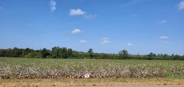 5.6 Acre County Rd 49 Lot 3, Malvern, AL 36349 (MLS #175585) :: Team Linda Simmons Real Estate