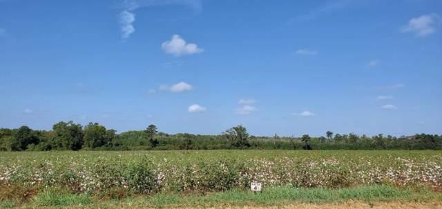 11.2 Acs County Rd 49 Lot 4, Malvern, AL 36349 (MLS #175586) :: Team Linda Simmons Real Estate