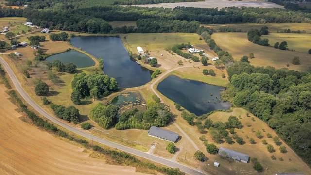 700 Adkinson Road, Wicksburg, AL 36352 (MLS #175665) :: Team Linda Simmons Real Estate