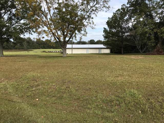 867 Mccallister Road, Dothan, AL 36301 (MLS #175833) :: Team Linda Simmons Real Estate