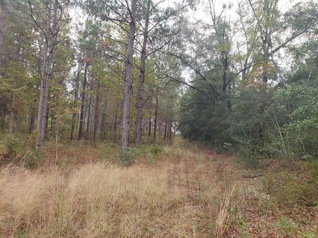 20 acres County Road 4, Black, AL 36314 (MLS #175940) :: Team Linda Simmons Real Estate