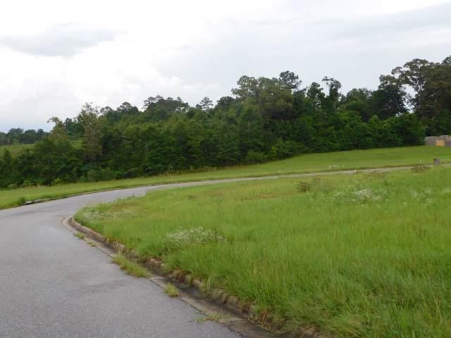 223 Clearview Drive, Enterprise, AL 36330 (MLS #175972) :: Team Linda Simmons Real Estate